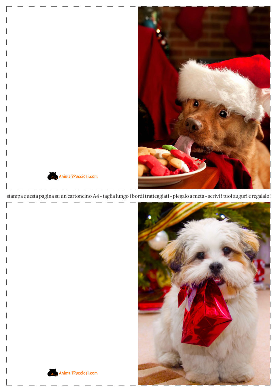 Foto Di Natale Con Cani.Biglietti Natale Gratis Da Stampare A Casa Propria Animali