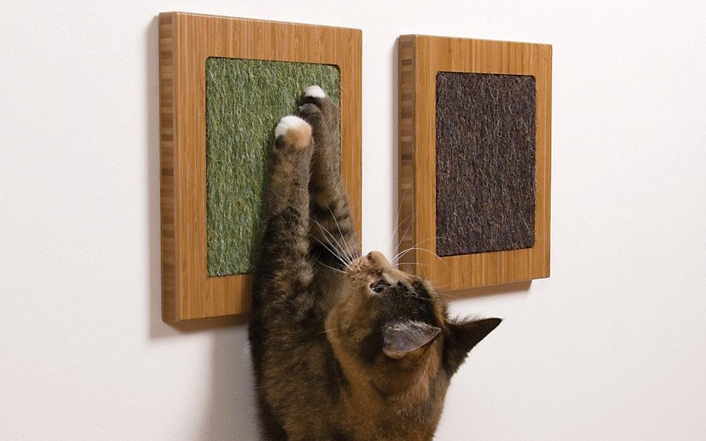 Articoli per gatti economici e di lusso animali pucciosi for Animali pucciosi