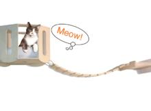 Parete attrezzata per gatti: idee per la casa