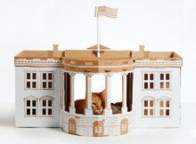 5 oggetti folli per gatti