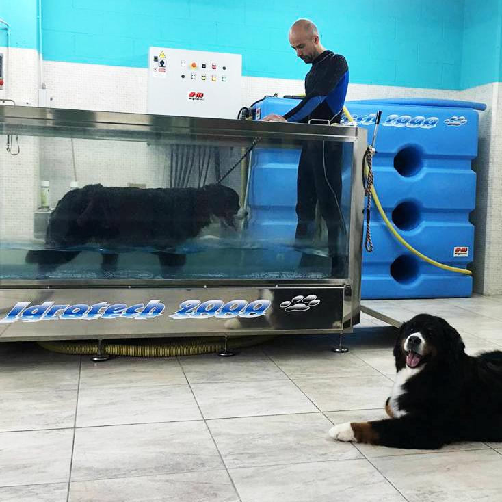 Piscina per cani terapeutica