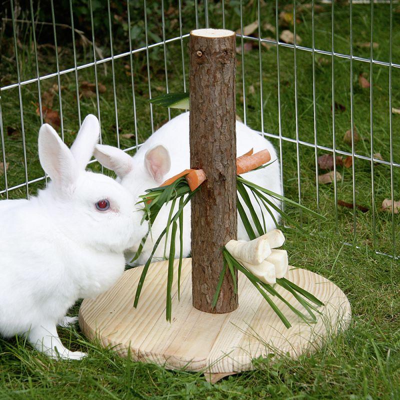 Il coniglio in giardino guida alla progettazione for Casette per conigli fai da te