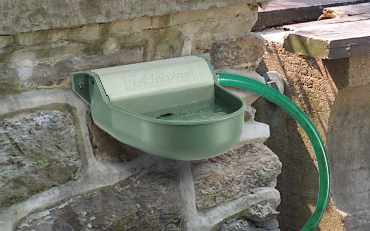 Fontanelle per animali: l'acqua corrente per i 4 zampe