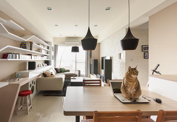 Una casa su misura per gatti a Taiwan