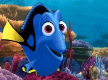 Un acquario da film: i pesci di Alla ricerca di Dory!