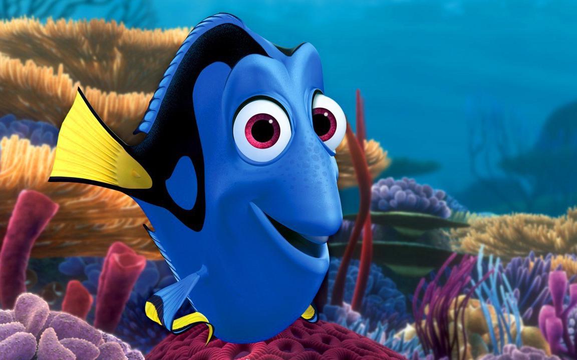 Un acquario da film i pesci di alla ricerca di dory for Immagini dory