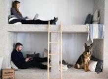 Uffici dog friendly: al lavoro con il cane
