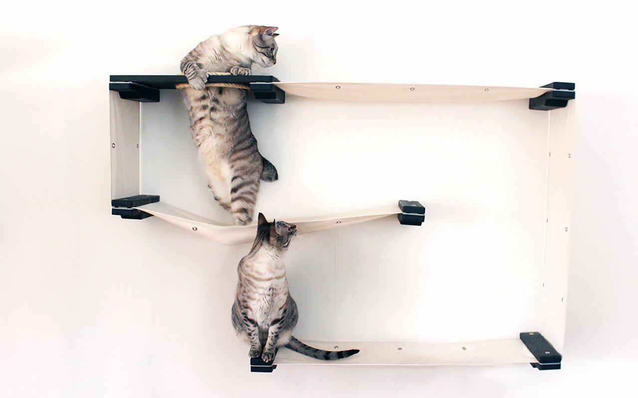 Mensole per gatti come disporle e dove trovarle animali for Parete attrezzata gatti