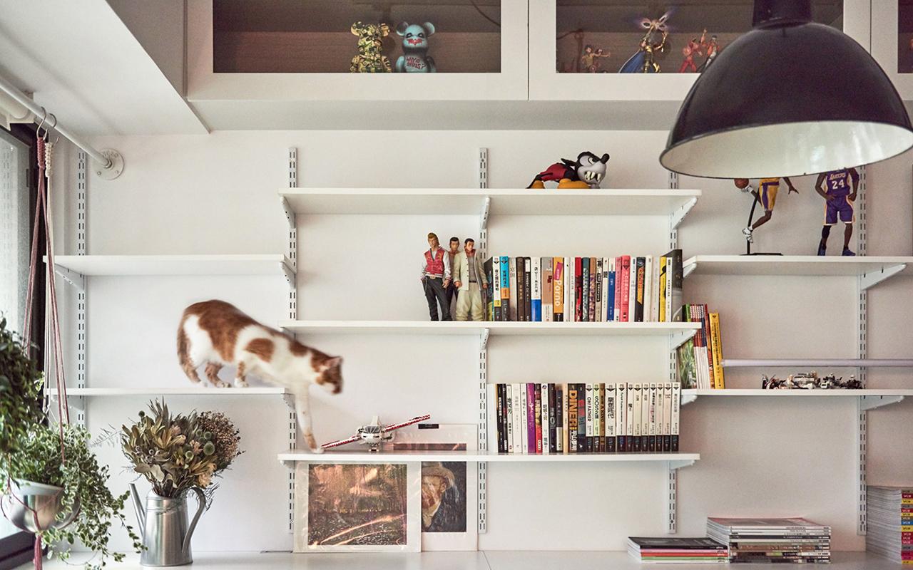 Una parete per gatti per un monolocale da sogno