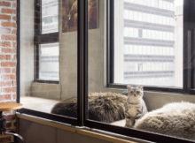 Uno splendido attico industrial a misura di gatto