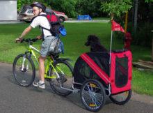 In bicicletta con il cane, cosa usare e cosa fare