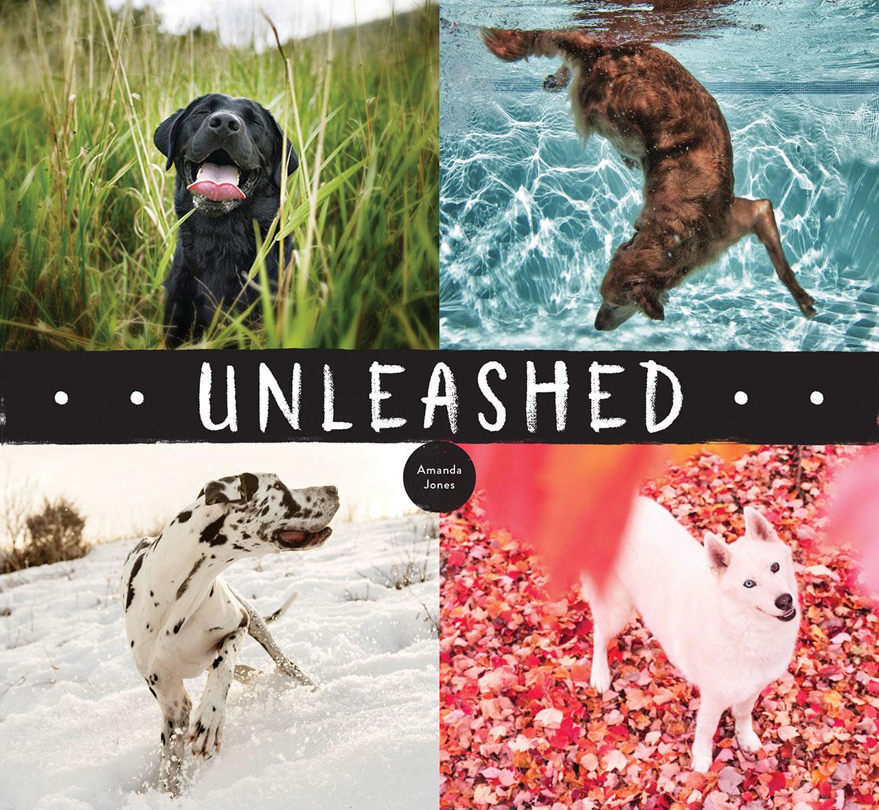 Unleashed, l'ultima raccolta fotografica di Amanda Jones