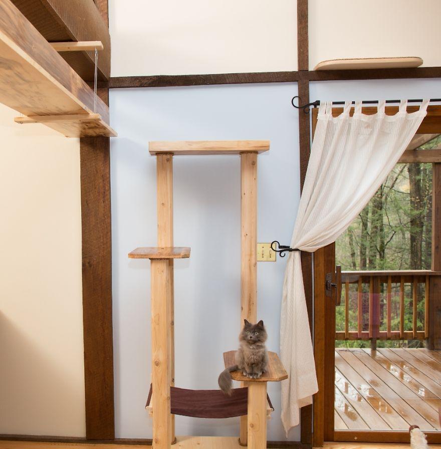 Arredare con il legno una casa a misura di gatti animali pucciosi - Cornicione casa ...