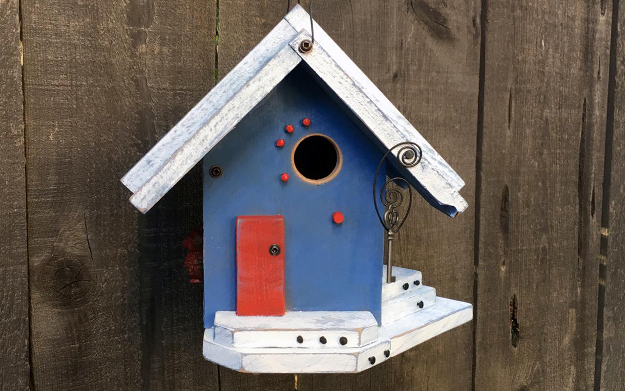 10 casette per uccelli da giardino