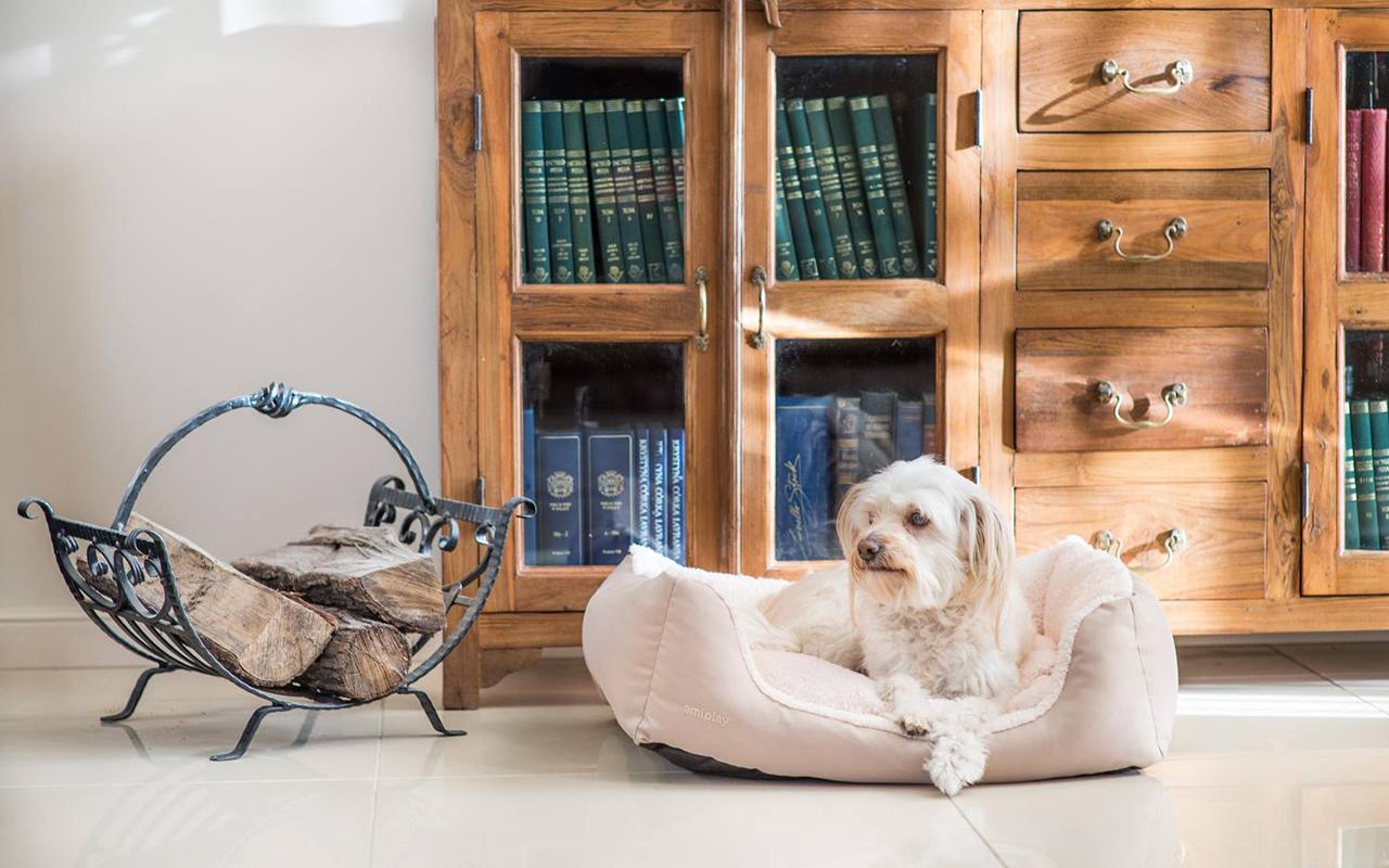 Zoomark 2017: novità arredo per cani e gatti