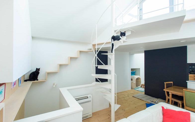 Progettare una casa a misura degli animali spunti dal for Progettare una casa