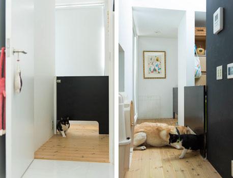 Progettare una casa a misura degli animali, spunti dal Giappone