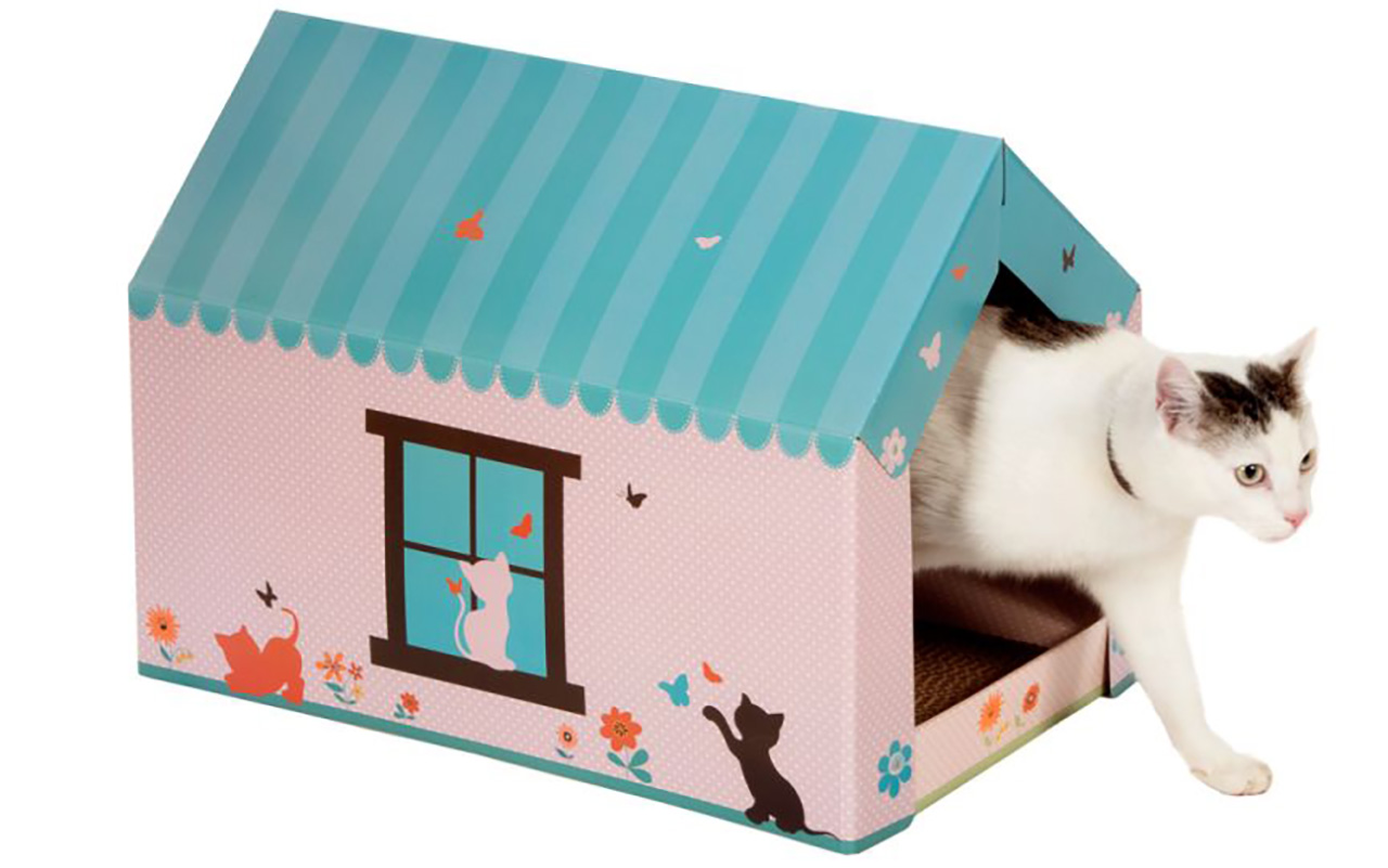 Cucce in cartone per gatti quando l essenzialità è la