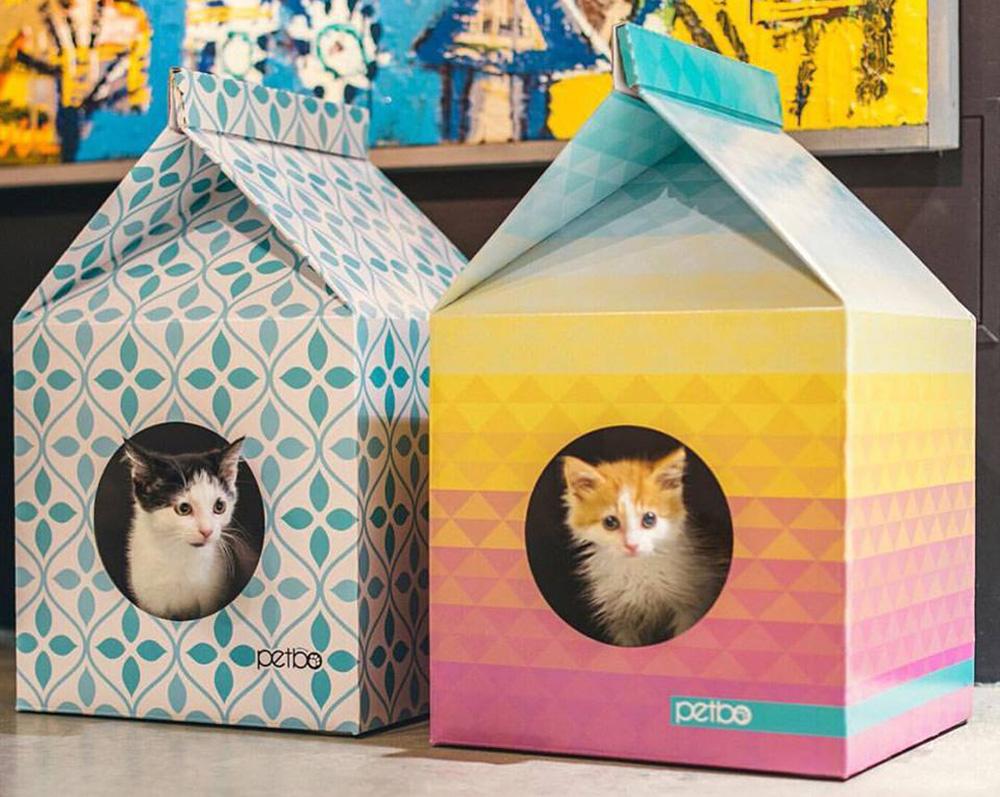 Cuccia Gatto Fai Da Te cucce in cartone per gatti, quando l'essenzialità è la carta