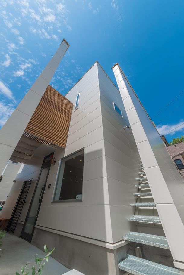 Il progetto di una villa moderna a misura di gatto for Villa moderna progetto