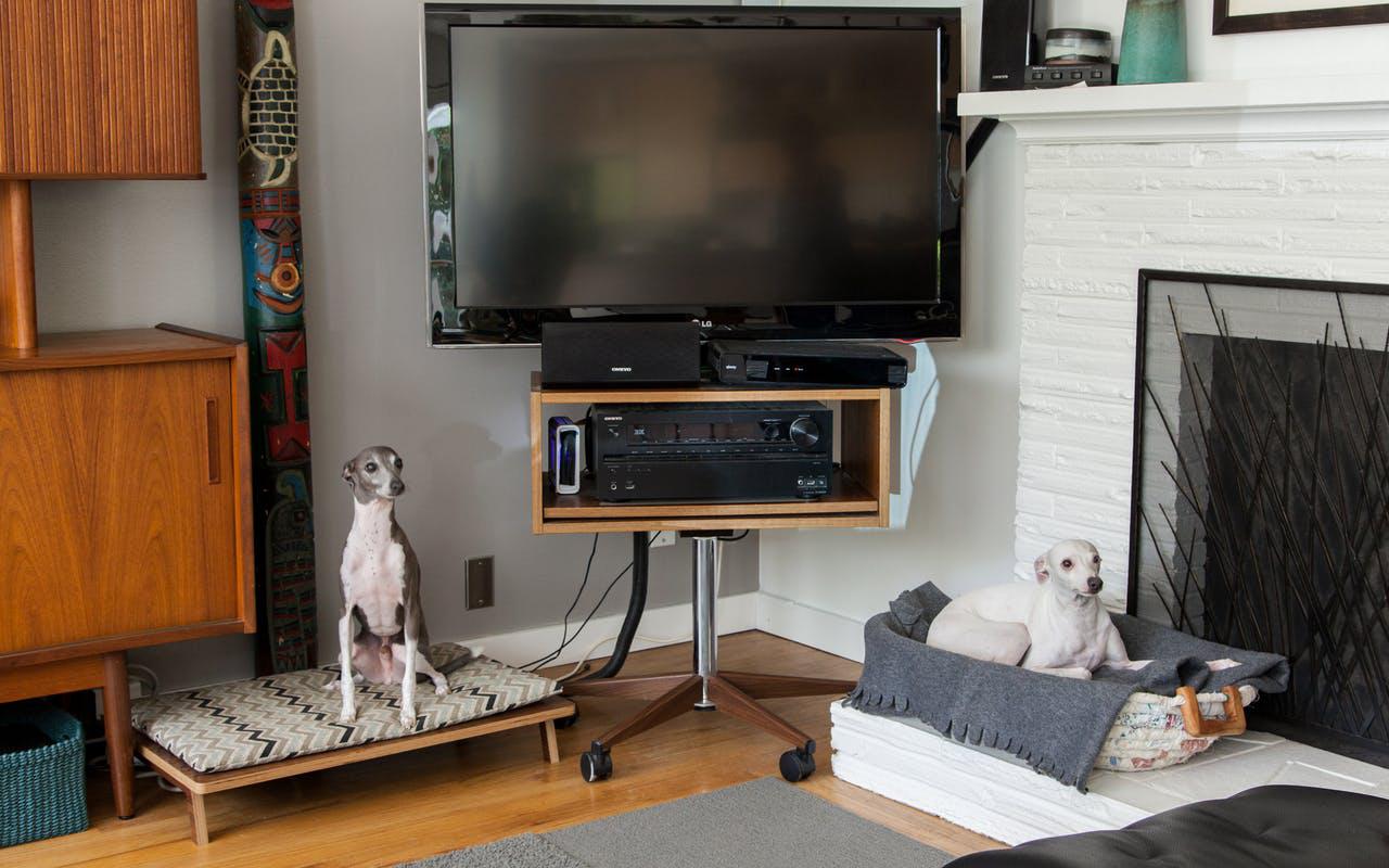 Una casa in stile art d co a misura di umani cani e gatti for Casa di ranch stile artigiano