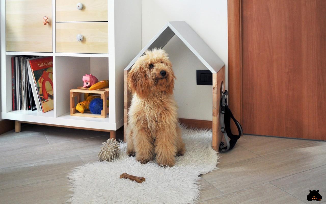 Cucce Design Per Cani una casa in stile nordico a misura di cane in italia