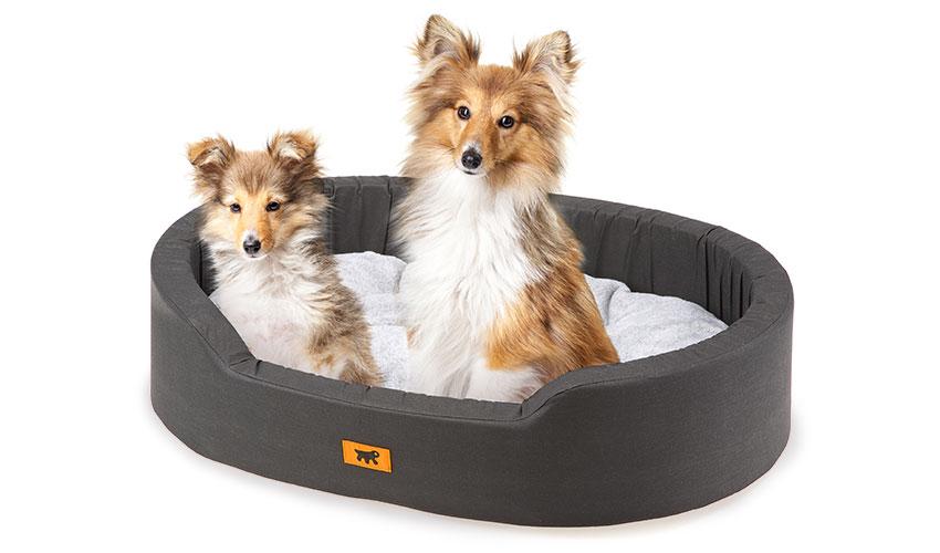 Lettini E Cucce Per Cani : Cucce lettini cani inverno animalipucciosi animali
