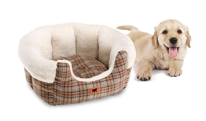 Cucce invernali per cani: l'inverno sta arrivando!