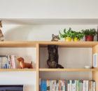 Una casa dall'arredo vintage a misura di gatti!