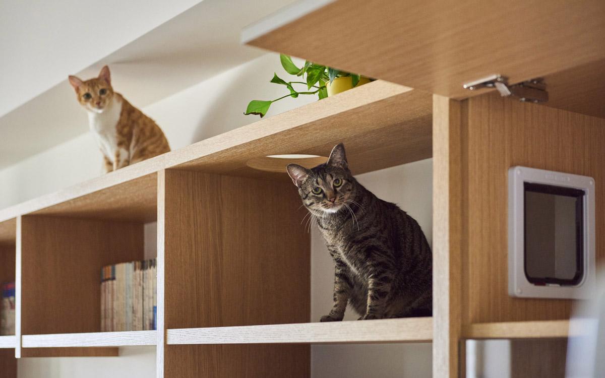 Il gatto con gli stivali soncino u prezzi aggiornati per il
