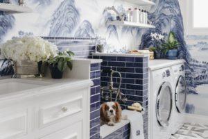 Una lavanderia da sogno... Per il cane!